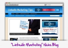 LinkedIn Marketing Niche Blog Theme