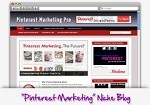 Pinterest Marketing Niche Blog Theme