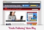 Kindle Publishing Niche Blog Theme