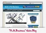 PLR Blog Business Niche Theme