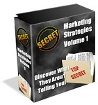 Marketing Strategies - PLR