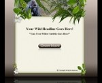 Wildlife Template & WP Theme 1
